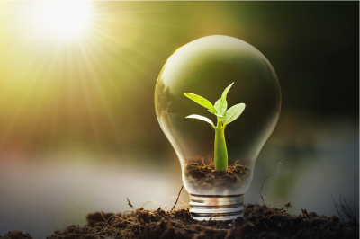 green it - environmental program